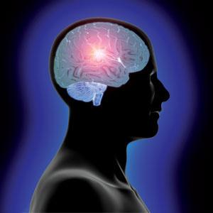 Inside A Professor's Head